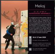 Meliaj - Rencontres de Saint-Brieuc